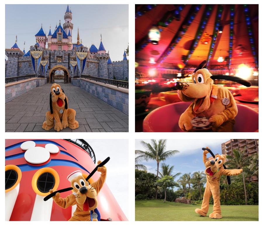 #DisneyMagicMoments: Join Us for an Ulti-mutt Disney Celebration of International Dog Day